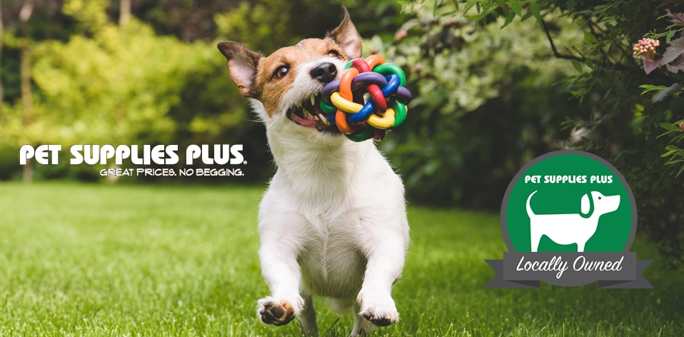 pet-supplies-plus